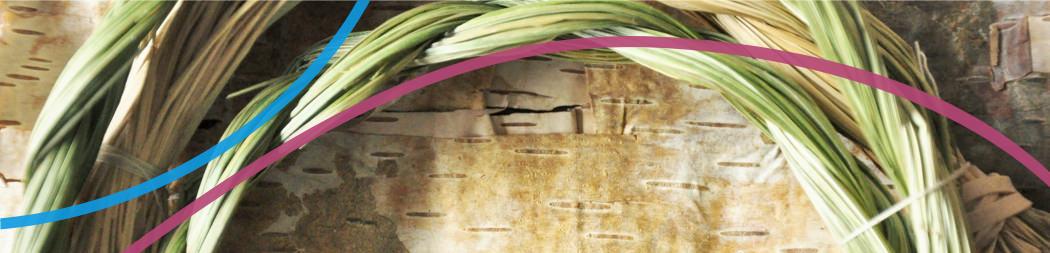 Pasthèque - bannière pour le programme Créer, connaître et partager